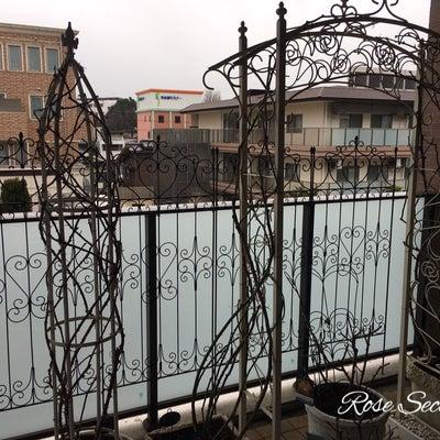 マンションのベランダでもバラのアーチをあきらめないの記事に添付されている画像