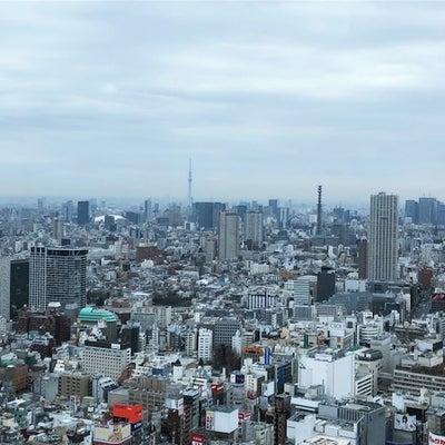 早春~美術館へ(新宿)の記事に添付されている画像