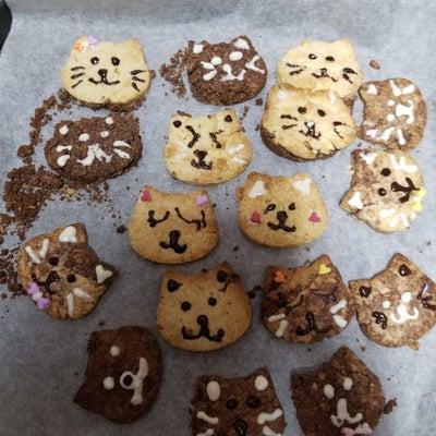 三女ちゃんのクッキー作り♪の記事に添付されている画像