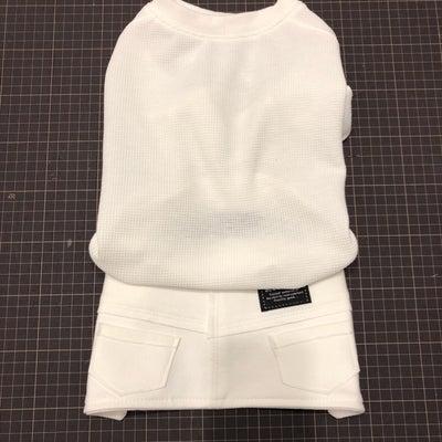 女の子のスカート風  &  2/27ドッグマッサージセミナーの記事に添付されている画像