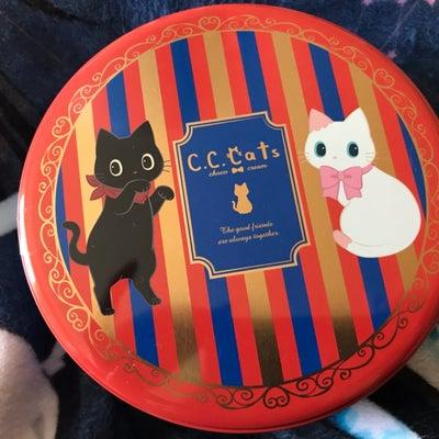 今日はバレンタインデー❤︎私にもチョコレートがもらえるなんて!!の記事に添付されている画像
