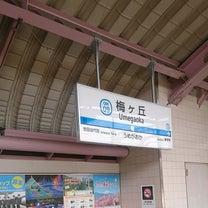 闘病中でも食べ歩き 第887弾 梅丘寿司の美登利 総本店の記事に添付されている画像