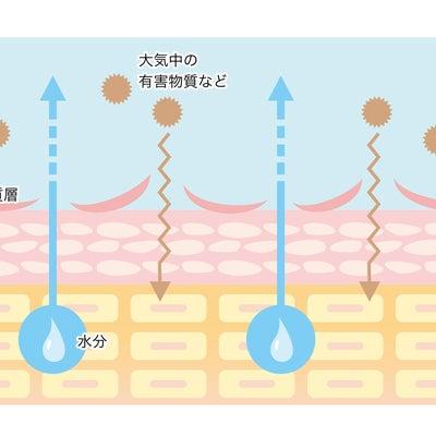 花粉の時期のスキンケアの記事に添付されている画像
