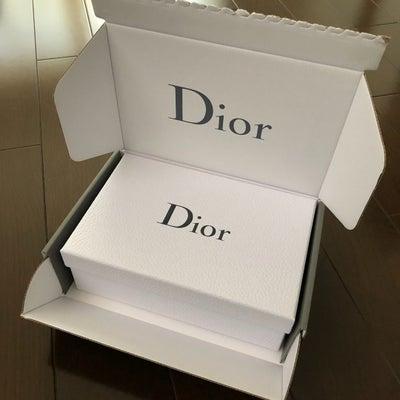 Dior到着の記事に添付されている画像