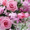 #生け花の画像