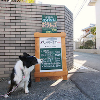1月26日びーちゃん、お初カフェ♬(@うくっぴ)の記事に添付されている画像