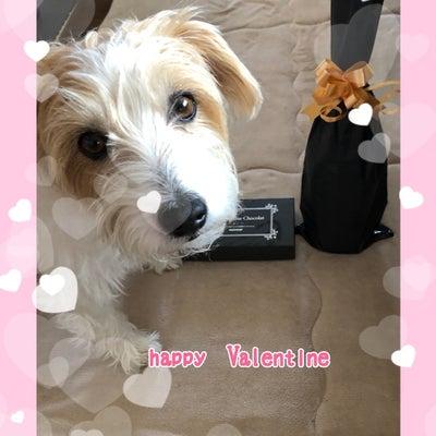 ♡ happy  Valentine ♡の記事に添付されている画像