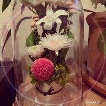 お花…の記事に添付されている画像