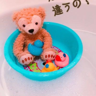 豆蔵、初めてのお風呂。の記事に添付されている画像