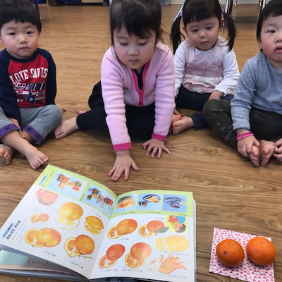 Clementine と Tangerineの記事に添付されている画像