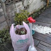 庭仕事は時間との戦いですの記事に添付されている画像