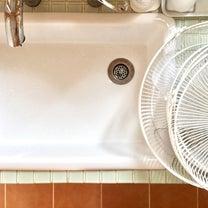 夏の気配!今年初の扇風機洗い&キッチン掃除の最近の相棒の記事に添付されている画像