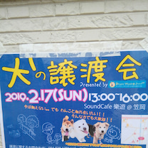 ピースワンコジャパン♪の記事に添付されている画像