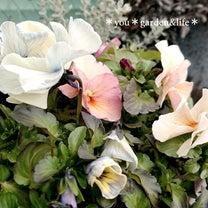 *草花の素晴らしい色合いを…*まだまだ楽しみ方は広がります…の記事に添付されている画像