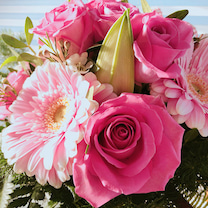 ヴァレンタインデーも終わり・・・の記事に添付されている画像