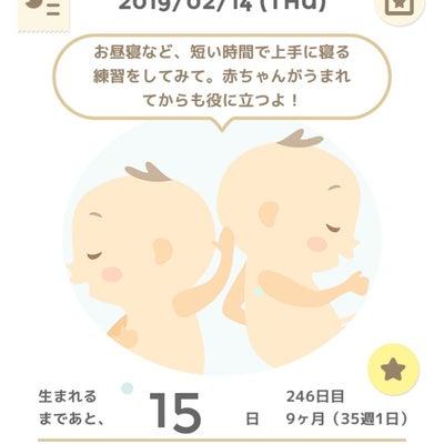 35w1d 妊婦検診10回目の記事に添付されている画像