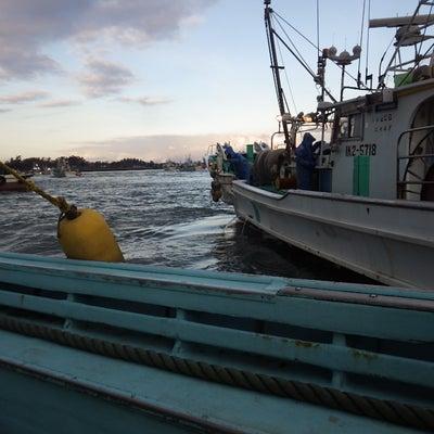 14日15日出漁の記事に添付されている画像