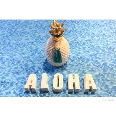 ALOHAのロゴを作りました★我が家のワンコ君の記事に添付されている画像