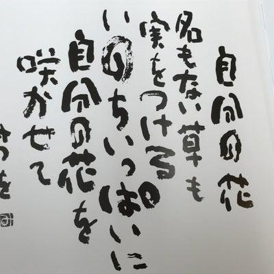 """""""愛らしさ""""の記事に添付されている画像"""