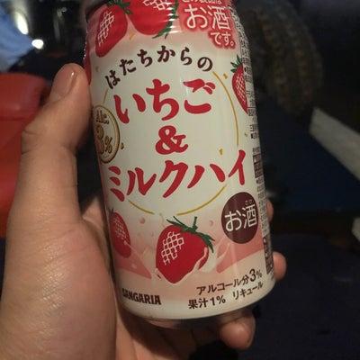 日本一周記録118日目大阪府堺市【滞在⑦】の記事に添付されている画像