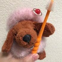 歯ブラシの記事に添付されている画像