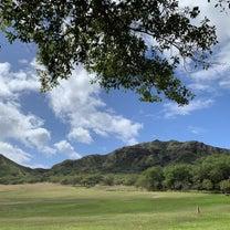 朝食後の絶景ハイキングの記事に添付されている画像
