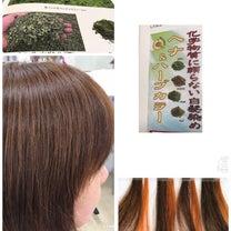 天然100%ヘナカラーはデドッス、髪質改善、体元気の記事に添付されている画像