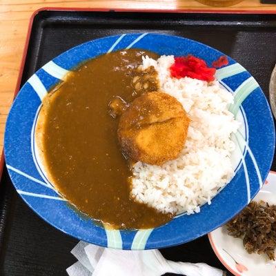 南九州遠征【その5】いちきポンカレーを目指せ! 2019カレー62軒83食目の記事に添付されている画像