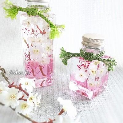 春爛漫♪『桜ハーバリウム制作』ご案内の記事に添付されている画像