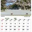 2019年 3月の 古都の風カレンダー