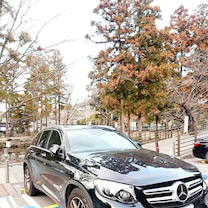チョコレートと❤️イチゴと❤️鎌倉と❤️の記事に添付されている画像