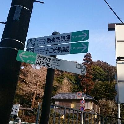 朝散歩~朝比奈切通しの記事に添付されている画像