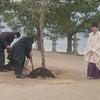 平清盛生誕900年祭記念植樹の画像
