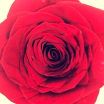 Happy Valentine's Dayの記事に添付されている画像