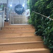 innisfree GREEN CAFE/イニスフリー グリーンカフェ(明洞店)の記事に添付されている画像