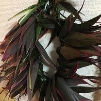 葉っぱの冠の記事に添付されている画像
