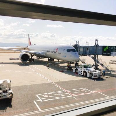 アシアナ航空で特別機内食♪初めてコレに変更したら美味しかった^ ^の記事に添付されている画像