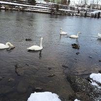 冬のお散歩の記事に添付されている画像