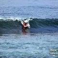 #SURFINGの画像