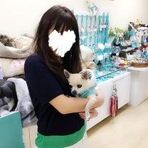 ハワイ寒い〜_:(´ཀ`」 ∠):の記事に添付されている画像