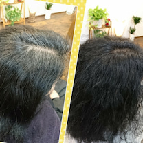 ハリ・ツヤ・コシの出る香草カラーの記事に添付されている画像