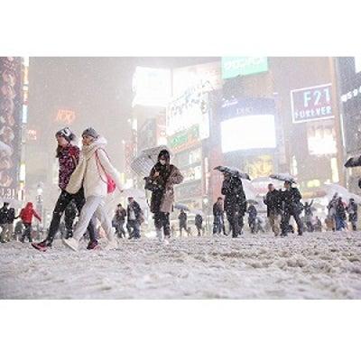 今日は雪の特異日      泥だらけの雪だるまの記事に添付されている画像