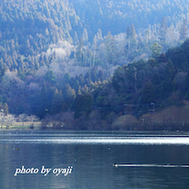 日が差す余呉湖の記事に添付されている画像