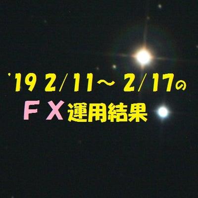 【FX】'19 2/11~ 2/17の運用結果の記事に添付されている画像