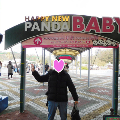 パンダラブへパンダに会いに♡の記事に添付されている画像
