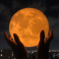 月をこの手にの記事に添付されている画像