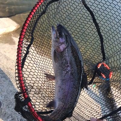 大物釣り大会終了〜、の記事に添付されている画像