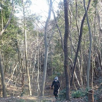 埼玉県飯能の柏木山へ行って来ました。2019年2月17日の記事に添付されている画像