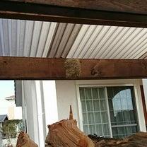 薪棚に謎の巣の記事に添付されている画像
