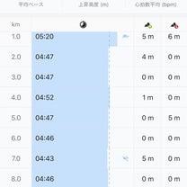 Night RUN 10kmの記事に添付されている画像